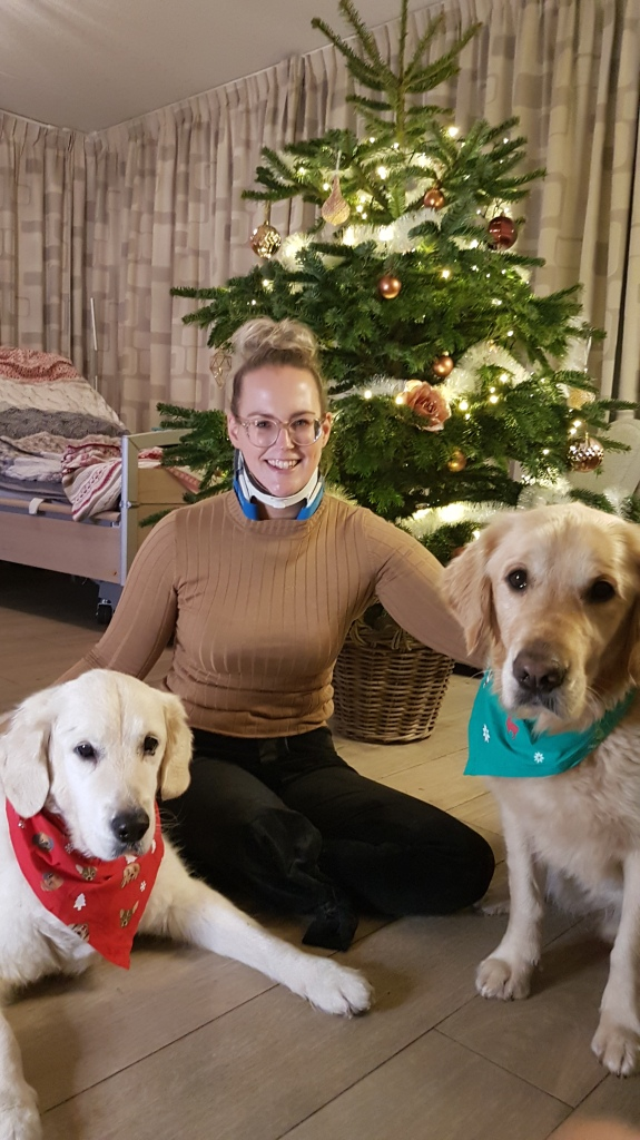 Dominique met haar hulphonden met op de achtergrond de kerstboom.
